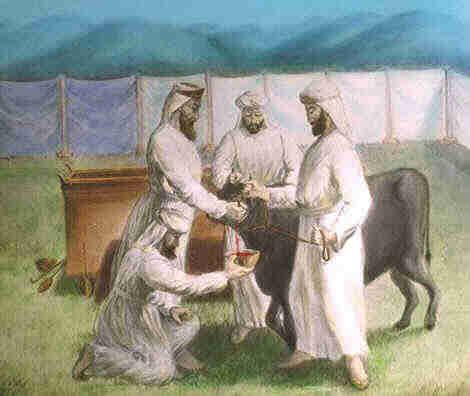 Mensajes y Estudios: Una Vida de Sacrificio (LEV 1:3-9)